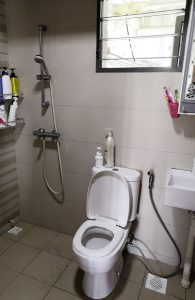 HDB Common Toilet Renovation Before After Makeover to Modern Luxury